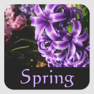 Blue Hyacinth Spring Sticker