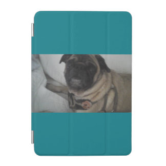 Blue IPad Mini Case iPad Mini Cover