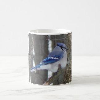 Blue Jay Bird Lover Collection Basic White Mug