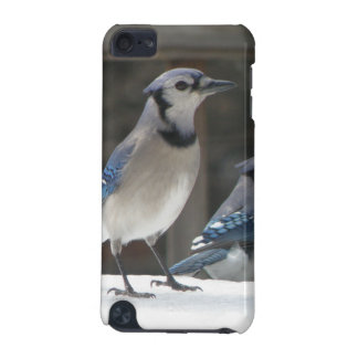Blue Jay Hard Shell Case for iPod Touch