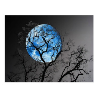 BLUE MOON POSTCARD