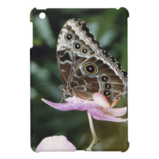 Blue Morpho Butterfly Case For The iPad Mini