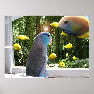 Blue Pacific Parrotlet Bird & Fish digital poster