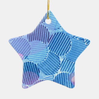 Blue Paradise Ceramic Star Decoration