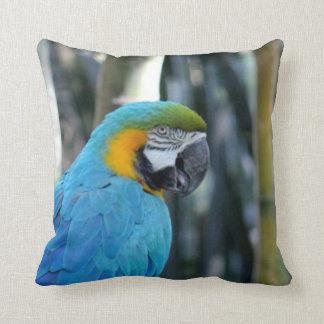 Blue Parrot photo Throw Pillow