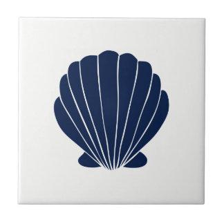 Blue Sea Shell on White Ceramic Tile