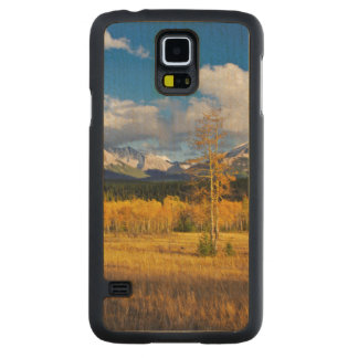 Blue skies and clouds above a meadow carved maple galaxy s5 case