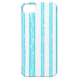 Blue Striped Case