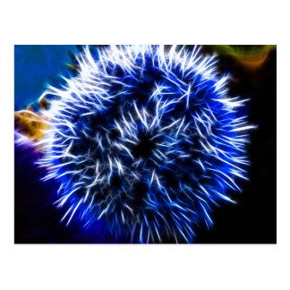 Blue Urchin Postcard