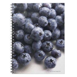Blueberries 2 notebooks
