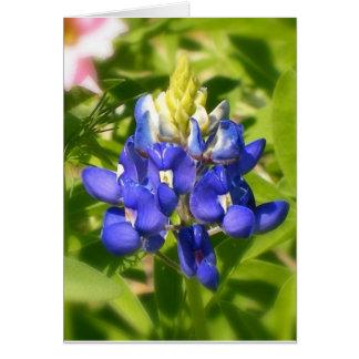 Bluebonnet of Texas w/insert Greeting Card