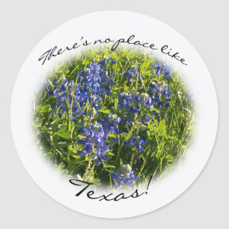 "Bluebonnet ""There's no Place Like Texas."" Sticker"