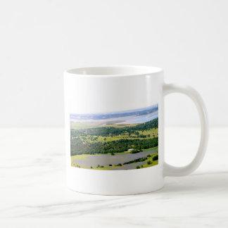 bluebonnets.JPG Coffee Mug