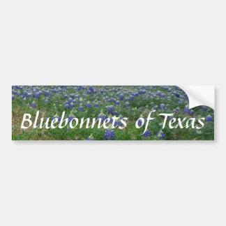 Bluebonnets of Texas Bumper Sticker