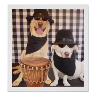 Blues Brothers Labs Poster