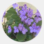 Bluest Blue Violets Round Sticker