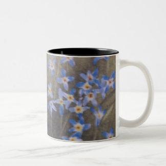 Bluets Mugs