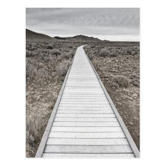 Boardwalk through the desert postcard