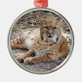 Bobcat Christmas Ornament