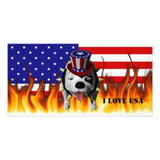 Bobo Show's his patriotism Photo Cards