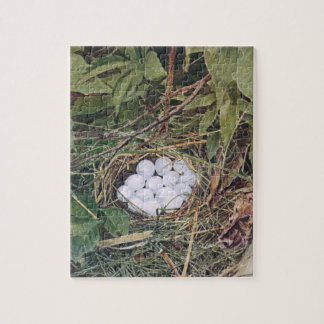 Bobwhite Nest Full of Eggs Jigsaw Puzzle
