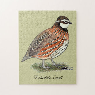 Bobwhite Quail Rooster Jigsaw Puzzle