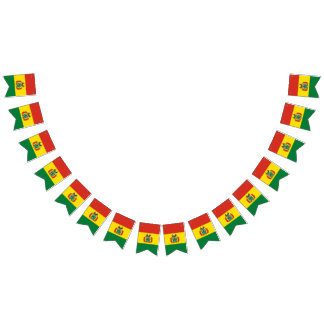 Bolivian Flag