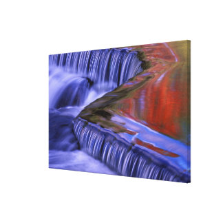 Bond Falls; Reflecting Fall Colored Leaves; Canvas Print