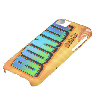 BONDI iPhone 5C CASE