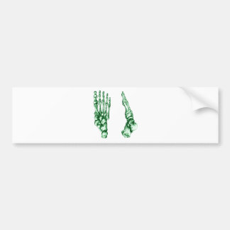 Bones of the feet - light green bumper sticker