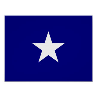 Bonnie Blue Flag White Star Print