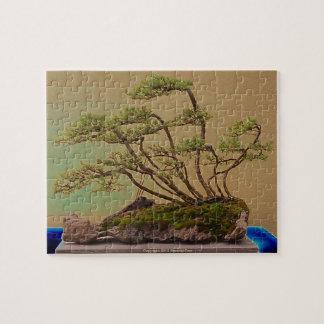 Bonsai 2 jigsaw puzzle