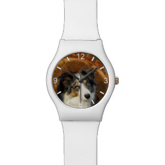 Border Collie Blue Merle Dog - girly dial-plate Watch
