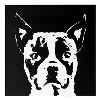 Boston Terrier Black & White Acrylic Wall Art