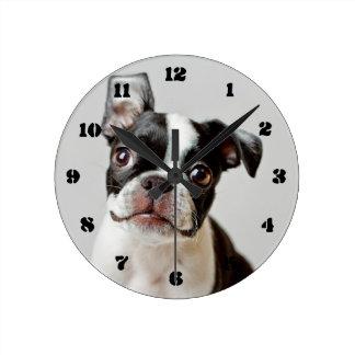 Boston Terrier dog puppy. Round Clock