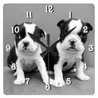 Boston Terrier dogs square clock