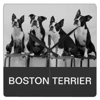 Boston terrier familyⅠ Square Wall Clock