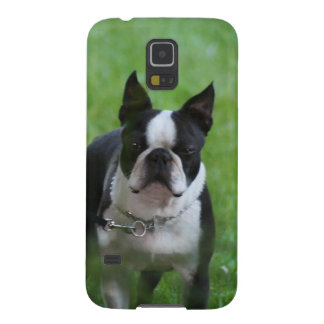 Boston Terrier Galaxy S5 Case