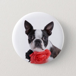 Boston Terrier Mollie mouse child 6 Cm Round Badge