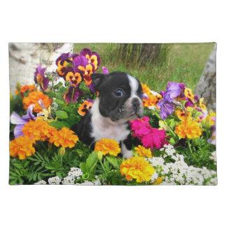Boston terrier place mats
