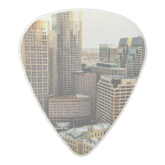 Boston view acetal guitar pick