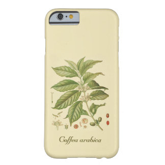 Botanical Coffee Plant, iPhone 6/6s, Barely There Barely There iPhone 6 Case