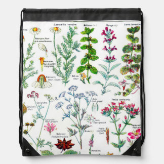 Botanical Illustrations - Larousse Plants Drawstring Bag