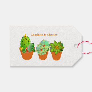 Botanical Succulents Plant Pots Personalized Gift Tags