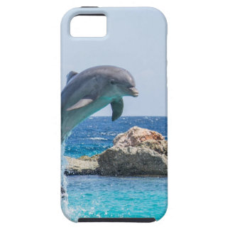 Bottlenose Dolphin iPhone 5 Case