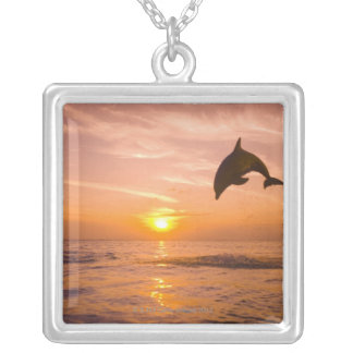 Bottlenose Dolphin jumping 2 Silver Plated Necklace