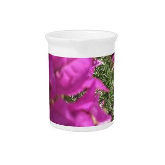 Bougainvillea flowers pitcher