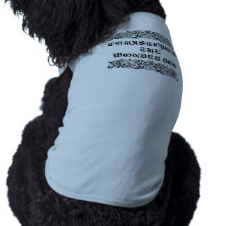 Bound Monsters  Pet Clothing