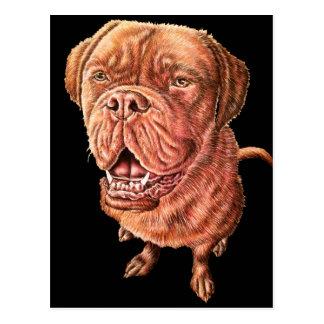 Boxer Bulldog Mastiff Dog Drawing Animal Art Postcard