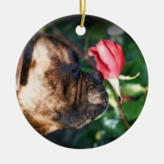 Boxer dog and red rose ornament